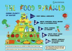 Food-Pyramid-From-HSE
